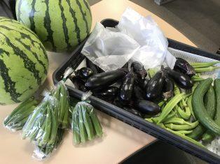 たくさんのお野菜いただきました!